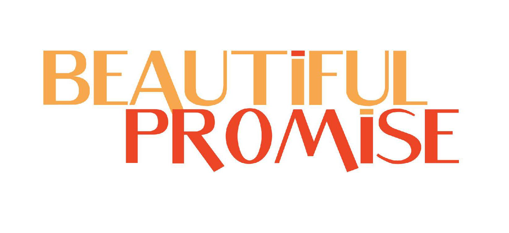 https://www.promise-project.org/promise2/volunteer/2019-beautiful-promise/